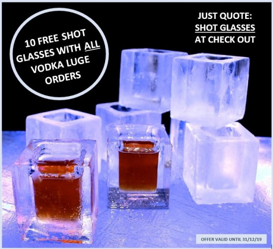 10 FREE Shot Glasses with Every Vodka Luge Order